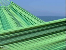 toile hamac vert