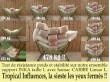 Support hamac métal