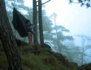 hamac nature
