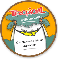 Tropical Hamac